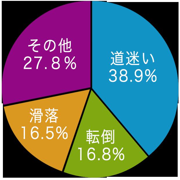 山岳遭難原因の円グラフ