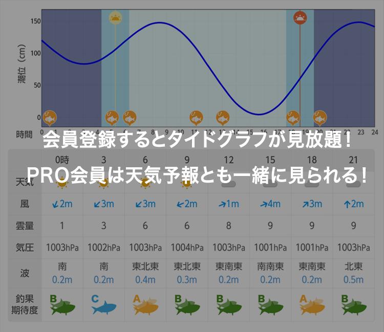 天気表サンプル画像