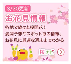 桜ナビ(3/14更新)